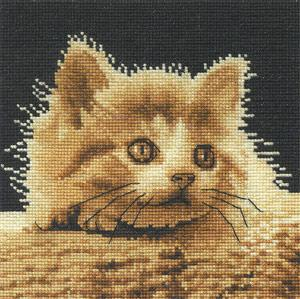 Big Eyes Kitty BK134 DMC
