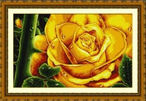 Dome 100803 Rose (Yellow )
