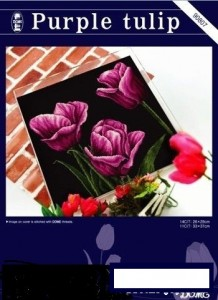 Dome 90807 Purple tulip
