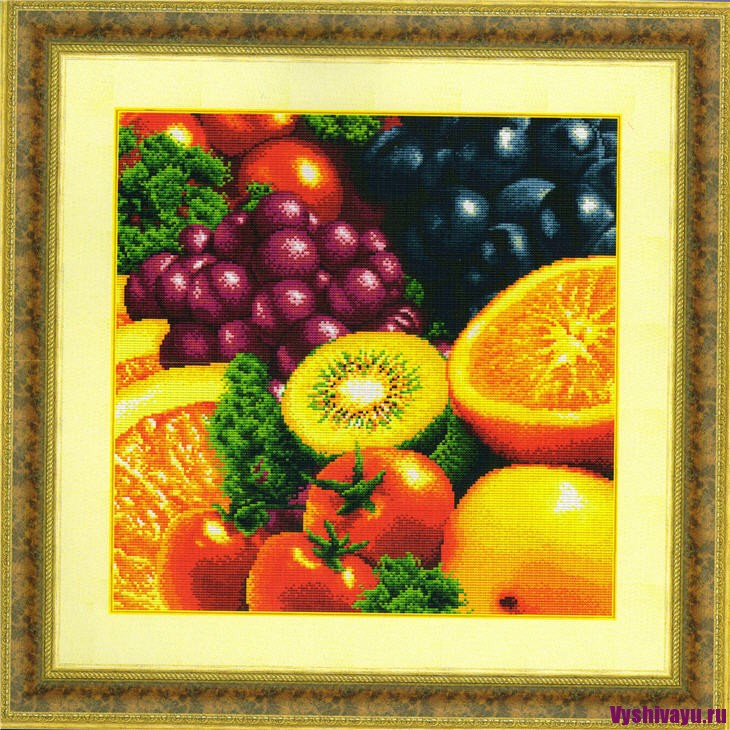 Dome 90602 New Fresh Fruits 2