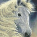 KustomKrafts 98827 Midnight Glow - White Horse