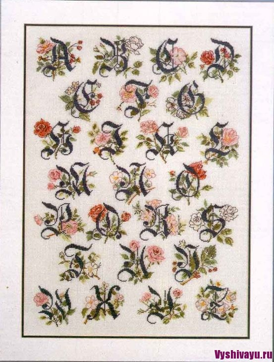 70-0300 ABC Collection Antique Roses