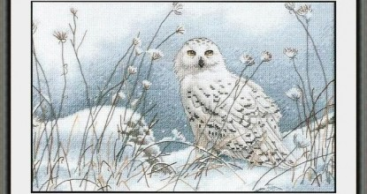 Dimensions 35221 Northwind Owl