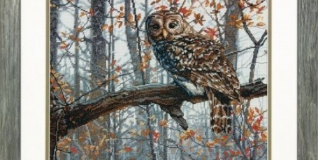 Dimensions 70-35311 Wise Owl